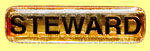 Picture link to information about the stewards, showing a Steward's badge